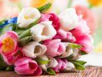 Dónde comprar flores naturales baratas online al mejor precio