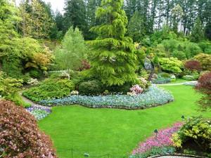 consejos para ahorrar agua en el jardin