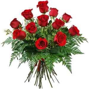 -rosas-rojas-amor-