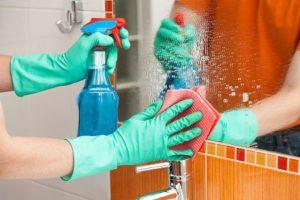limpieza del hogar1
