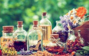 comprar curso-online-fitoterapia-aromaterapia-china precio barato